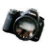 プロの使うカメラ